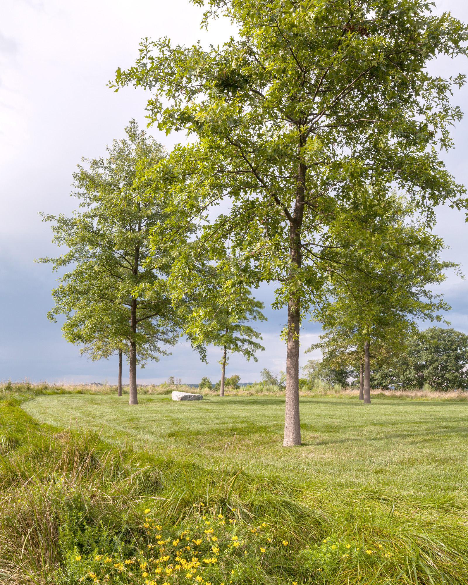 0614_Chatham Farm_Gallery Image_MESSINGER_2374